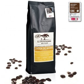 Fully Washed Single Estate Coffee Beans Lagoa do Morro 100% Arabica 500g